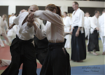 2017_photo-aikido_pankova-01320.jpg