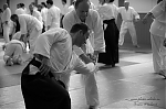 2017_photo-aikido_pankova-01469.jpg
