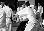 2017_photo-aikido_pankova-01540.jpg