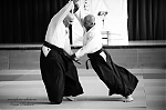 2017_photo-aikido_pankova-01761.jpg