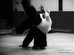2017_photo-aikido_pankova-01851.jpg