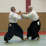 2017_photo-aikido_pankova-01856.jpg