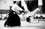 2017_photo-aikido_pankova-01884.jpg
