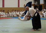 2017_photo-aikido_pankova-01931.jpg