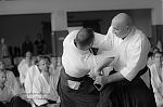 2017_photo-aikido_pankova-02255.jpg